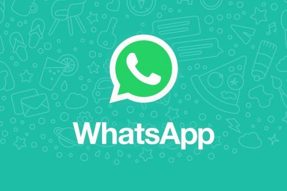 WahtsApp Web: in arrivo chiamate e videochiamate